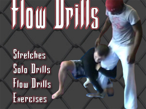 Half-Guard Flow Drill 1